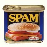 spam-blog
